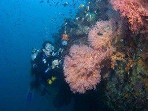 diving-phuket